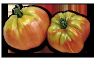 Weibulls tomat oxheart