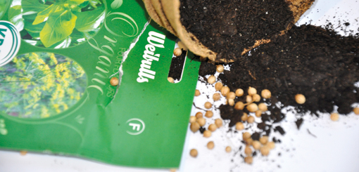 Organic: Kryddor