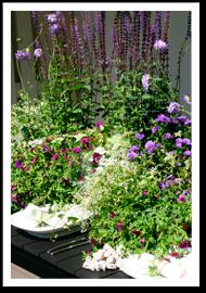 FloristUlriks bordsdukning, sommar