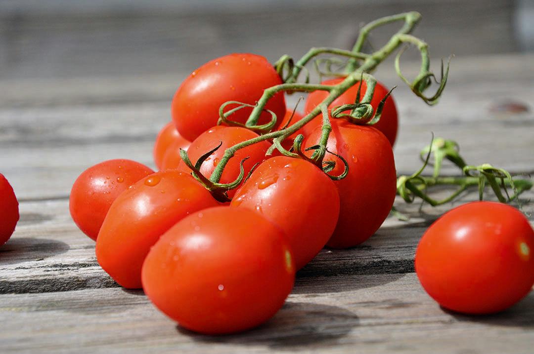 Smaklöken: Tomat